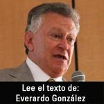 everardo-mini