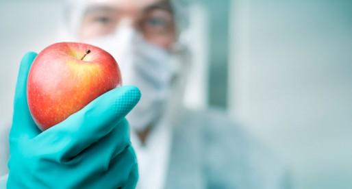 Alimentos Transgénicos: a favor o en contra