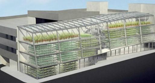 Granjas verticales: ¿la agricultura del futuro?