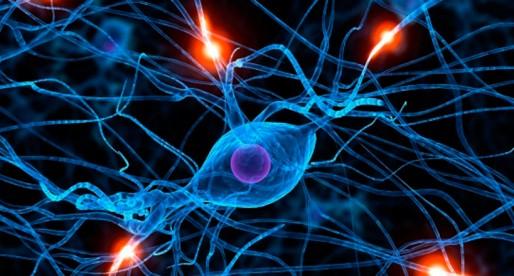 Parkinson: esa enfermedad sin cura