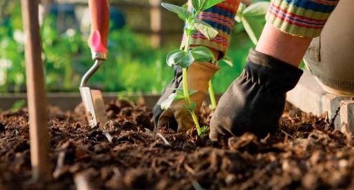 Ciencia para formar a los buenos jardineros