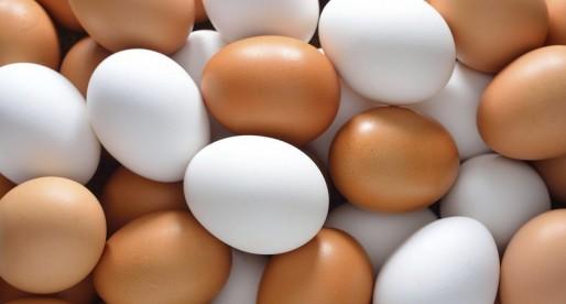Comer huevo sin preocuparse por el colesterol