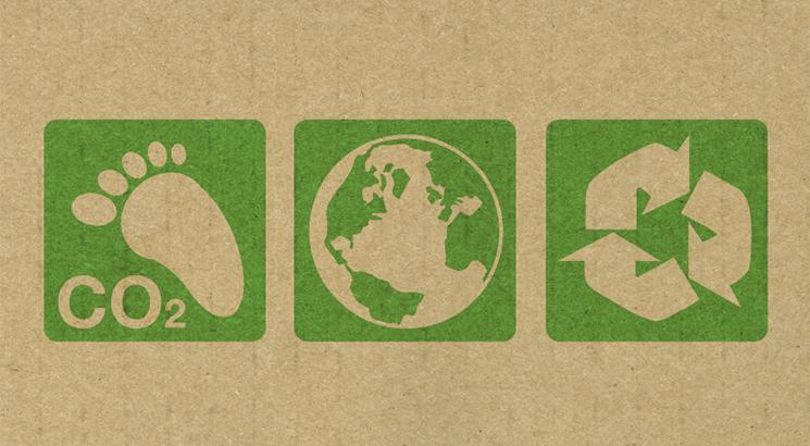 Páginas Verdes y ECOFEST