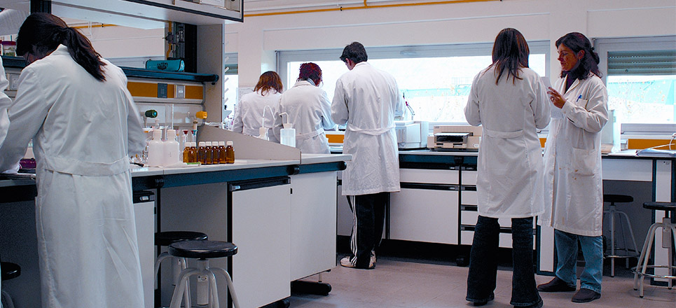Científicos entrenan células inmunes para destruir VIH
