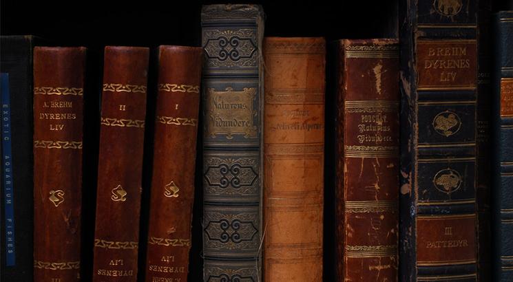 02 jueves Mantener biblioteca casera 03