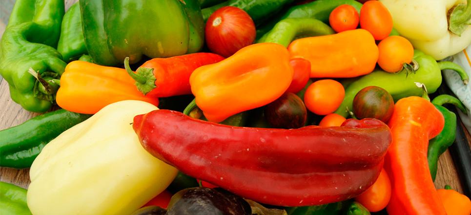 10 verduras que puedes plantar en casa