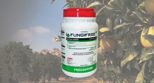 Biofungicida desarrollado en la UNAM