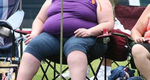 La obesidad y el sistema de recompensas