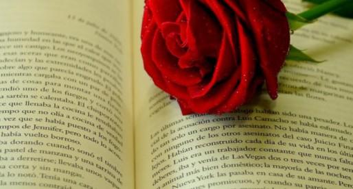 Fiesta del Libro y la Rosa