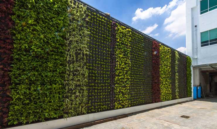Piante muro verde via col verde di arredamento e interni - Como hacer un muro verde ...