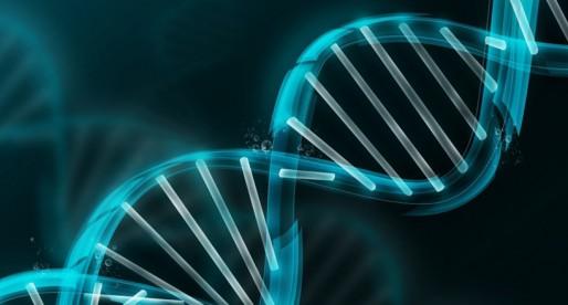 La genética y su fondo formativo