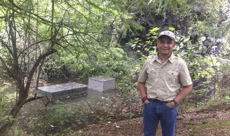 Según un modelo estadístico realizado por el Laboratorio de Restauración Ecológica del Instituto de Biología (IB), para 2022 ya no habrá axolotes en Xochimilco, indicó el investigador Horacio Mena.