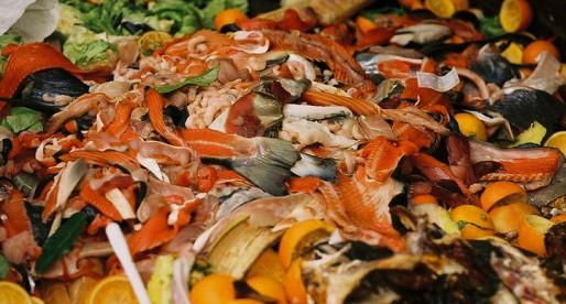 Desperdicio de alimentos en el mundo