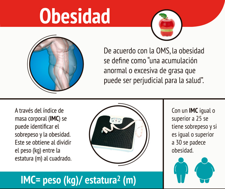INFO-OBESIDAD-2015-01