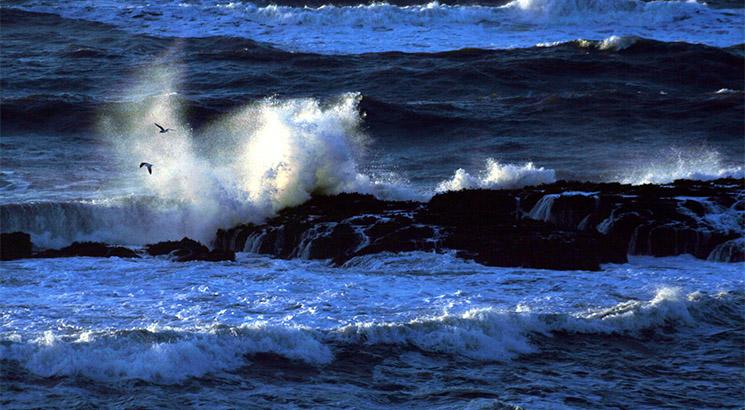 Oceanos_basurero_02