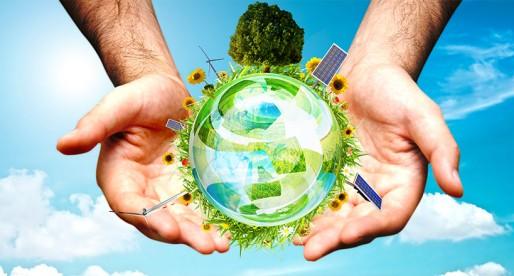 Sostenibilidad vs Sustentabilidad