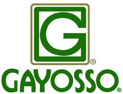 gayosso2