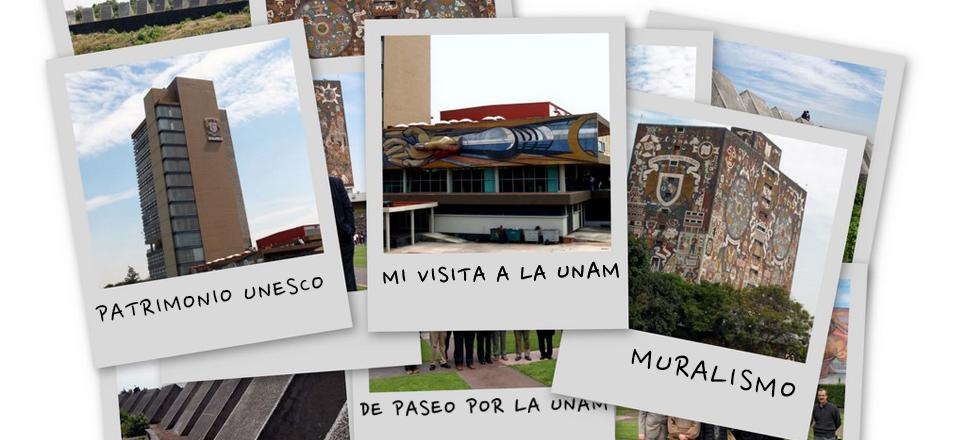 Descubre la riqueza de la UNAM: Visitas Guiadas