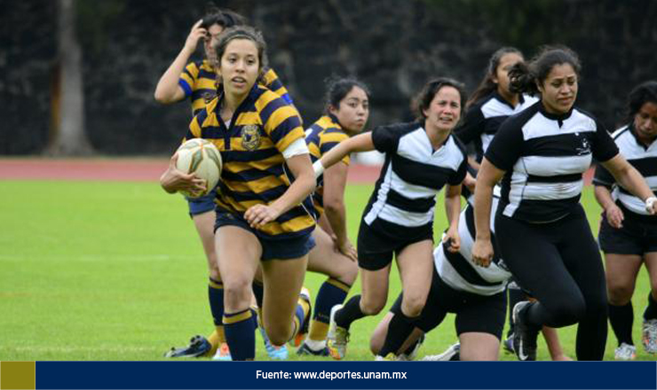 pumas rugby 3