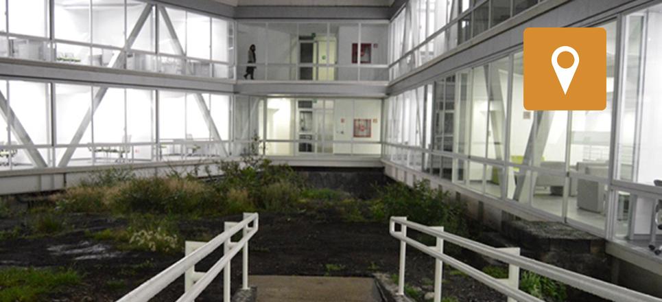 Inaugura UNAM el Centro de Ciencias de la Complejidad