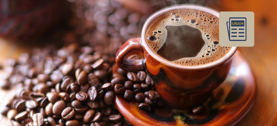 Segunda edición de Café & Chocolate Fest