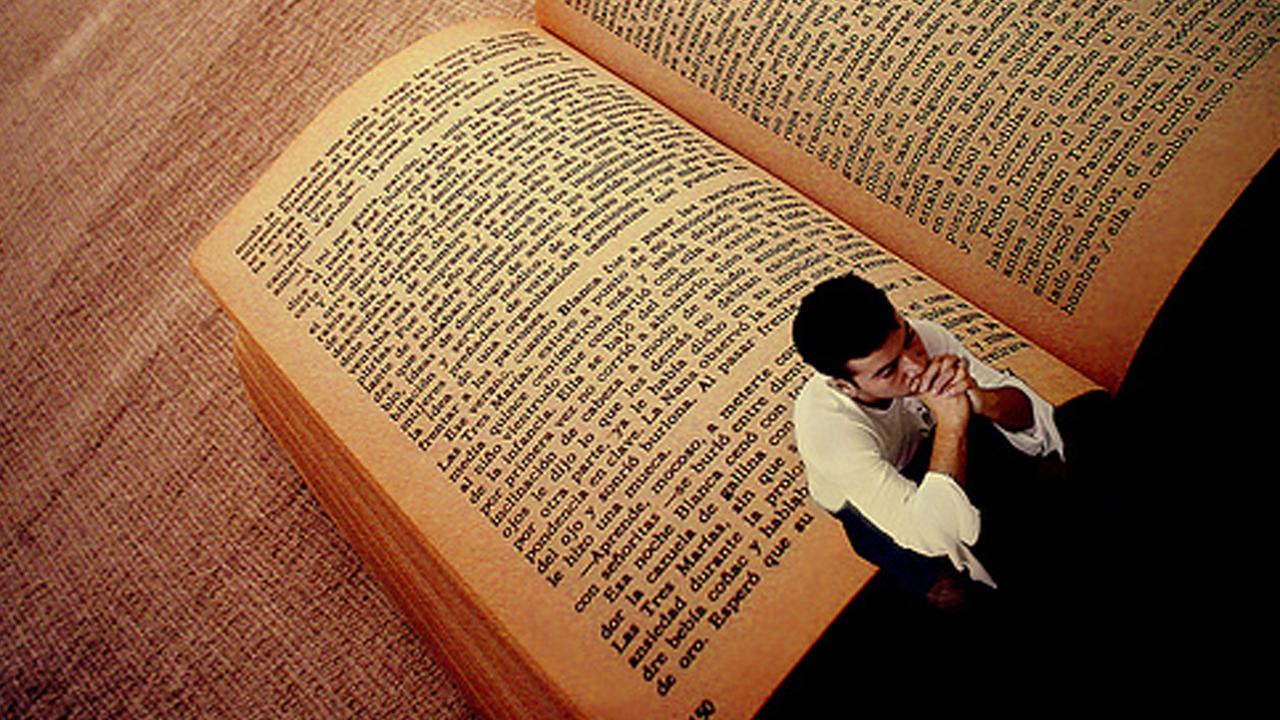 dia_libro_contenido1