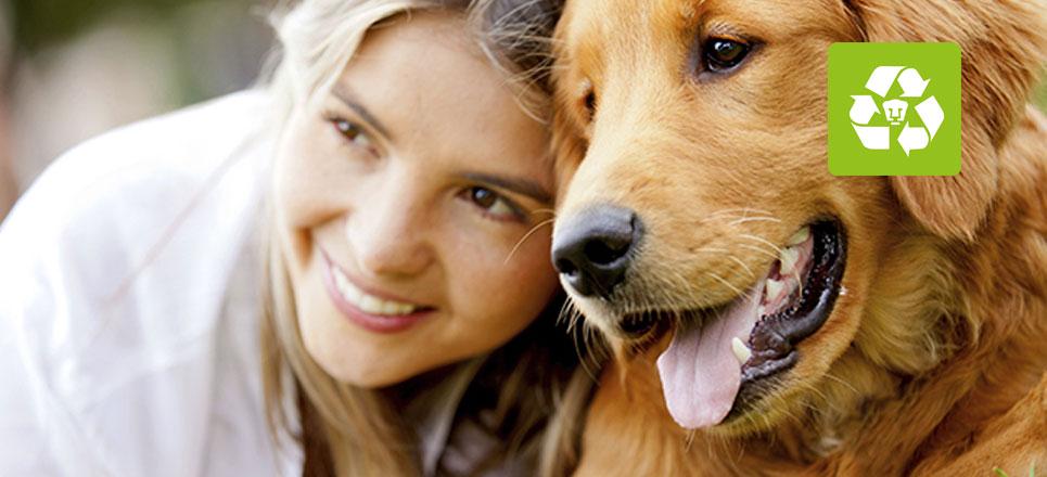 La importancia de esterilizar a las mascotas