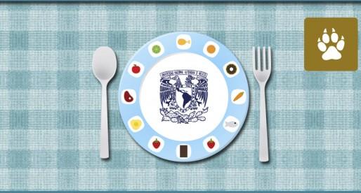 UNAM, segundo sitio en Investigación en Nutrición