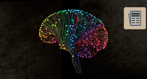 Bipolaridad, entre la euforia y la depresión