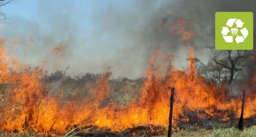 Crea UNAM primer mapa de monitoreo de incendios forestales