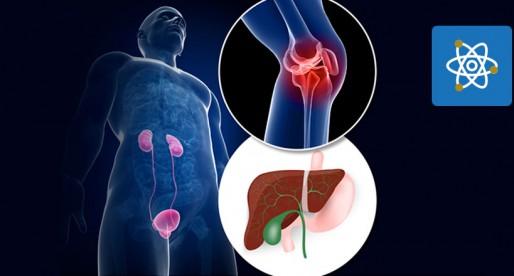 UNAM y la creación de bioprótesis para regenerar tejidos
