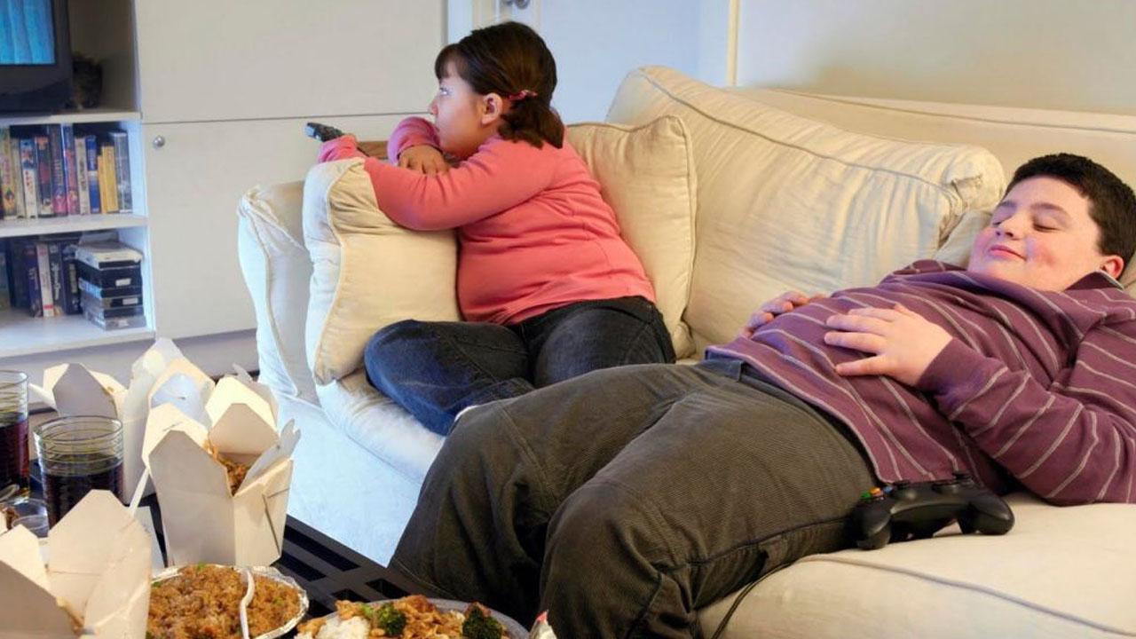 obesidad_infantil_contenido2