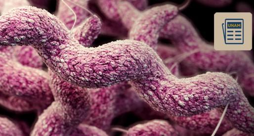 UNAM busca opciones para tratar la tuberculosis