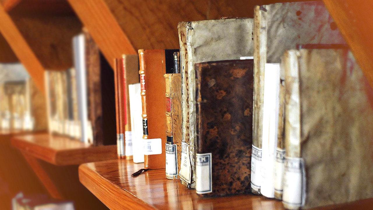 biblioteca_CONTENIDO1