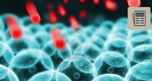 ¿Qué son las nanopartículas?