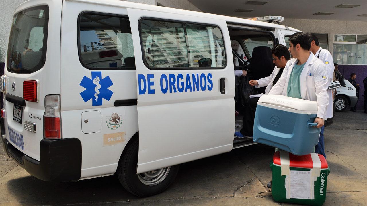donacion_organos_contenido2
