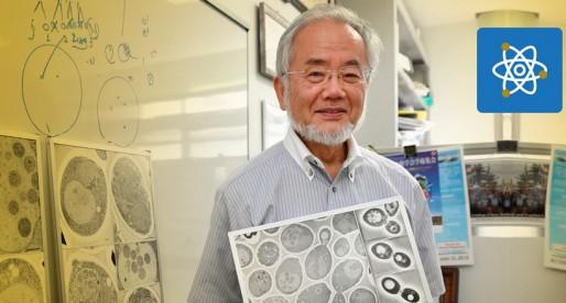 UNAM investiga causas del envejecimiento del Sistema Nervioso