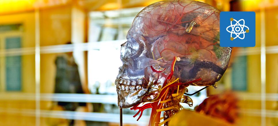 Inventos de la UNAM: Un sustituto para el hueso del cráneo