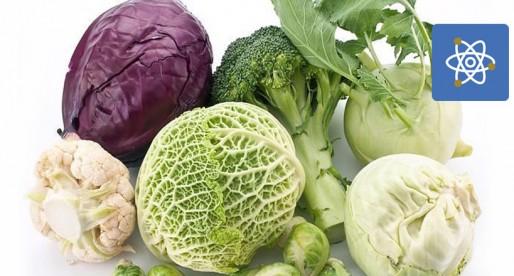 Vegetales tienen propiedades contra el Cáncer: UNAM