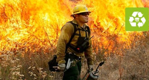 ¿Cómo afectan los incendios forestales?