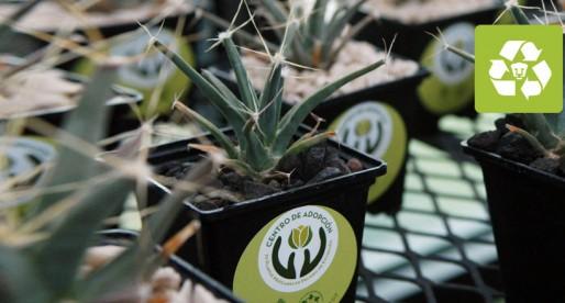 Esta navidad, la UNAM te regala una planta en peligro