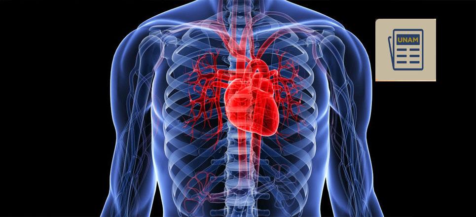 Conoce el novedoso tratamiento contra arritmias cardiacas