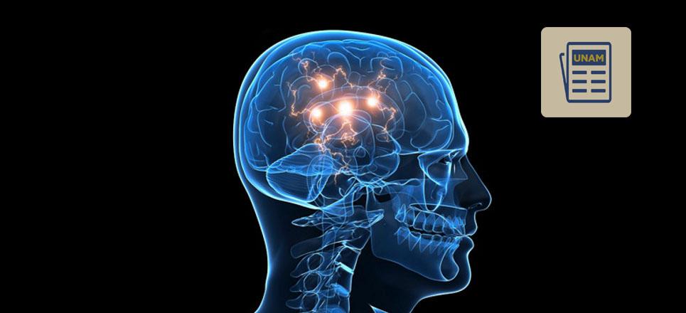 Trabaja UNAM con células de repuesto para tratar Parkinson y esclerosis