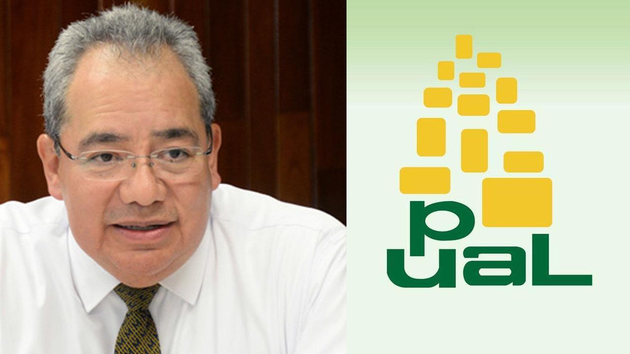pual_contenido1