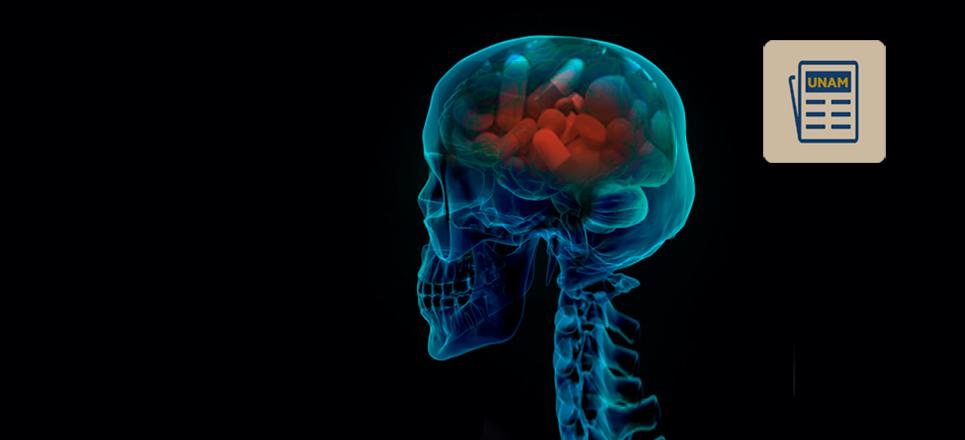 Drogas podrían modificar la estructura del cerebro