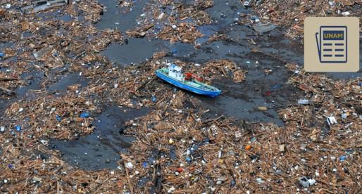 Basura en playas asfixia y mata a fauna marina; UNAM pide crear campañas
