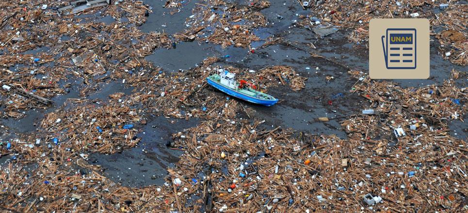 Basura en playas asfixia y mata a fauna marina