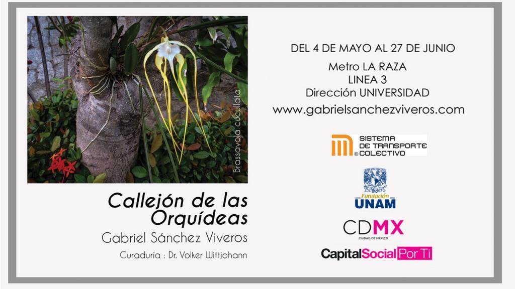 Expo orquideas