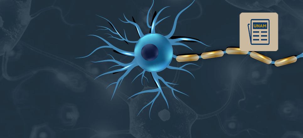 Aumentan los casos de esclerosis múltiple en México: UNAM