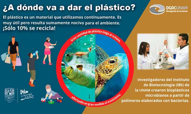 bioplastico2